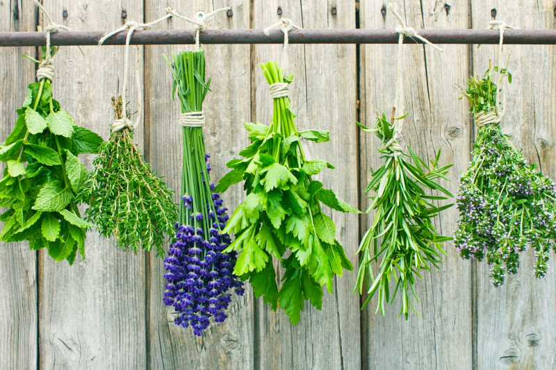 Split up your herbs