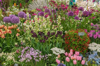 The RHS Chelsea Flower Show is celebrating the Queen's 90th birthday this year