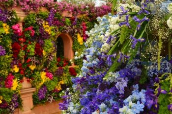 Indulge in the Chelsea Flower Show for inspiration
