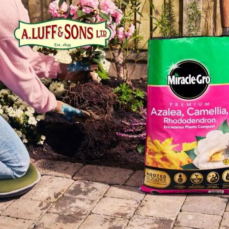 Miracle-Gro® Premium Azalea, Camellia & Rhododendron Ericaceous Compost - image 2